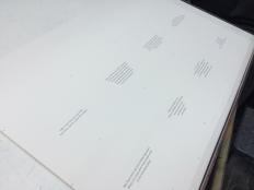 processomariposa_02