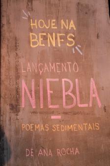 niebla_01