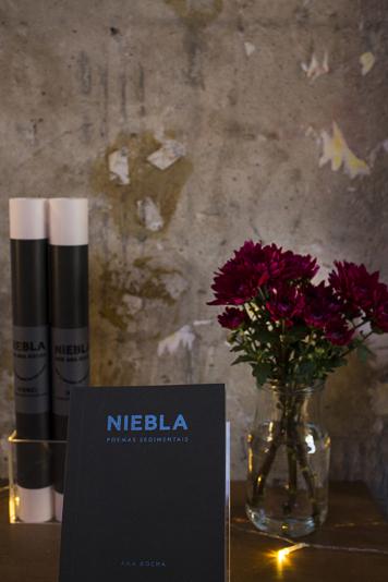 niebla_53
