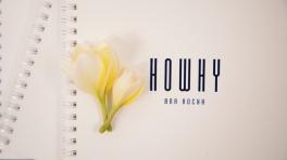 howhy_00